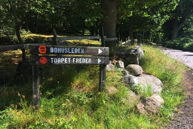Jarnvagsbro byggs over nationalpark